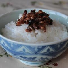 郷土料理/タンパク質/缶づめ/珍味/蜂の子/ご飯のお供 新米とともに土産物をいただく