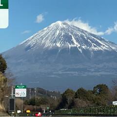 観覧車/富士山/フォロー大歓迎/にゃんこ同好会/おでかけ/旅行 沼津に行く道中、こんなに近くで富士山を見…