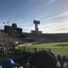 甲子園/高校野球/夏の思い出/アルプススタンド 高校野球、お友達の子供さんがピッチャーで…