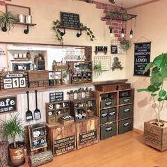 観葉植物/ブラケット棚DIY/リビング/DIY/雑貨/100均/... カウンターの上にアイアンのブラケット棚を…