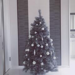 玄関/シンプルモダン/ホテルライク/モノトーンインテリア/クリスマスツリー/海外インテリア/...