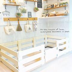 犬と暮らす/手作り/DIY女子/ペット/DIY/雑貨/... *わんこのお部屋が とりあえず形になった…