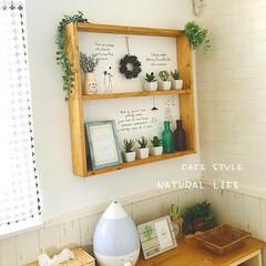 ウォールシール/リース/カフェ風/フェイクグリーン/セリア/ダイソー/... * 寝室の壁 * 棚を付けてみました! …