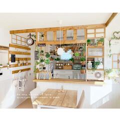 すのこ風/壁面インテリア/おうち/犬/お気に入り/DIY/... * 緑がたくさんの ダイニングキッチンの…