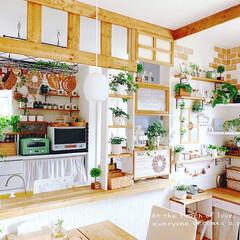 リメイクシート/窓枠DIY/フェイクグリーン/キッチンカウンター/キッチンカウンターDIY/壁面インテリア/... *キッチンカウンター横のスペース*  私…