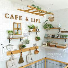 窓枠風diy/カフェ風/ナチュラルインテリア/棚/フェイクグリーン/ラダー/... * わんこスペースの横の壁 * キッチン…