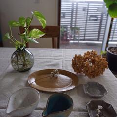 陶器/お皿/うつわ/うつわ好き/器/わたしのお気に入り 昨日、大好きな器作家さんの陶展があったの…
