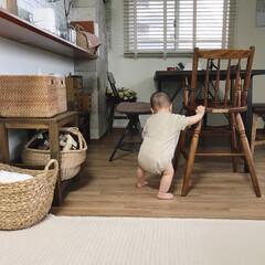リビングインテリア/カゴ収納/つかまり立ち/赤ちゃんのいる暮らし/赤ちゃんのいる生活/ニトリ 6ヶ月の娘、もうつかまり立ち始めちゃいま…
