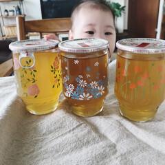 インテリア/グラス/昭和レトロ/レトログラス/ひやしあめ/おしゃれ レトロなグラスが可愛いひやしあめ 娘はピ…(3枚目)