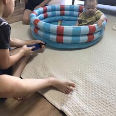 赤ちゃんのいる暮らし/赤ちゃんのいる生活/ベランダプール/おうちプール/プール/ダイソー/... 毎日暑過ぎますね😣 先日、8ヶ月の娘のた…(1枚目)