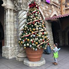 クリスマス/クリスマスツリー/旅行 はじめてのプチ旅行❤️  ディズニーシー…(1枚目)