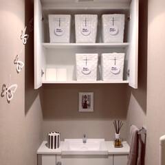 簡単DIY/トイレットペーパーカバー/トイレ/フォロー大歓迎/はじめてフォト投稿/ダイソー/... トイレの収納です。 ダイソーやニトリで買…