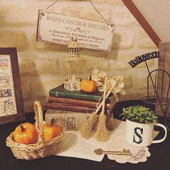ディスプレイ/ナチュラルキッチン/かぼちゃ/ハロウィンインテリア/ハロウィーン/ハロウィン/... 我が家のディスプレイもハロウィン仕様に変…
