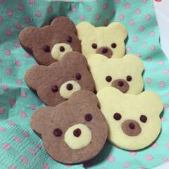 クッキング/お菓子作り/スイーツ/可愛い/くまさん/手作りクッキー/... くまさんクッキー♡︎チョコ味とプレーンの…