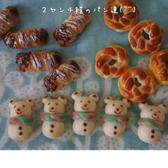 プティポッシュ/クリスマス/パン/フェイク/ミニチュアフード/ミニチュア/... * ちいさなちいさな粘土パンが焼き上がり…(1枚目)
