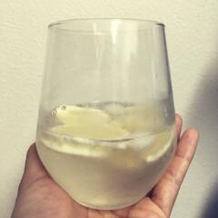 レモン/自家製レモネード/レモネード おいしー!