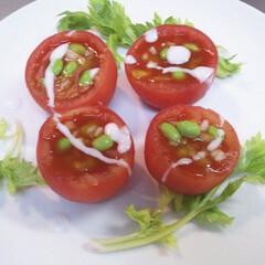 フード/おうちごはん トマトアスピック🍅 100%トマトジュー…