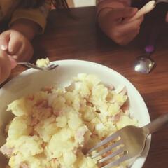 ポテサラ/パスタ/旦那料理/limiaキッチン同好会/キッチン この前の週末、久しぶりダウンしまして…そ…