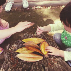 カラスのご飯/令和の一枚/フォロー大歓迎/LIMIAおでかけ部/おでかけ/風景/... また別の公園にて、葉っぱで何かをする娘た…