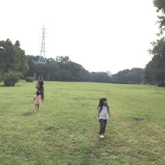 夕方/公園/ナナフシ/空/散歩/自然 夏の思い出、自然公園でまったり夕方散歩。…