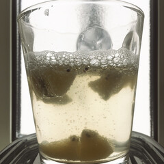 リンゴ酢/キウイ/フルーツビネガー/limiaキッチン同好会/キッチン/おうちカフェ お試しで少量、フルーツビネガーを作ってみ…(1枚目)
