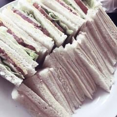 絵本/サンドイッチ/おうちごはん/ランチ/暮らし 絵本の影響で、サンドイッチを子どもたちと…
