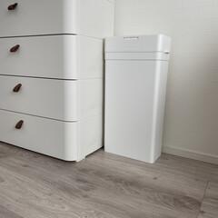 モノトーン雑貨/ごみ箱/ゴミ箱/生活の知恵/掃除/雑貨/... スタイリッシュなゴミ箱  家具になじんで…