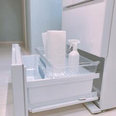 便利グッズ/冷蔵庫掃除/掃除/布巾/ペーパータオル 洗って使えるペーパータオル♡ スコッティ…