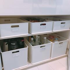 ラベリング/収納ボックス/収納/収納ケース/インボックス/ニトリ/... カップボードの中。ざっくり収納です。ニト…