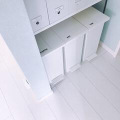 ケユカ/ゴミ箱収納/ごみ箱/パントリー収納/パントリー パントリーにある、愛用ゴミ箱。 ケユカの…