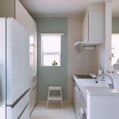 キッチン収納/キッチン雑貨/キッチン/タオルホルダー/タオルハンガー キッチン✨  マグネットのタオルホルダー…