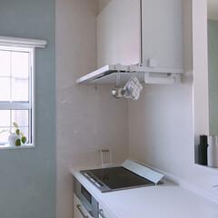 シンプルインテリア/キッチン収納/収納/キッチン/掃除/暮らし キッチンリセット後。 ボトルグラインダー…(1枚目)