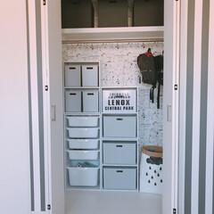 おもちゃ収納/クローゼット/子供部屋/カラーボックス/ニトリ/カラボ/... 見直し前の息子部屋クローゼットのおもちゃ…