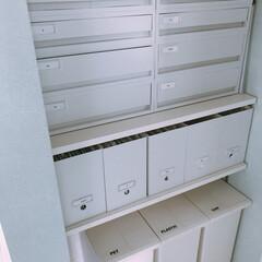 ファイルボックス収納/ファイルBOX/無印収納/無印/パントリー収納/パントリー/... パントリー♡ゴミ箱のラベルシール変えまし…