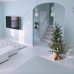 クリスマスオーナメント/ピカキュウ/リビング/クリスマスインテリア/クリスマス雑貨/クリスマスツリー/... ピカキュウさんのクリスマスツリー(*´∀…