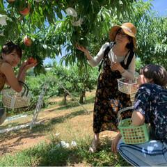桃狩り 母を連れて桃狩りに行ってきました。 娘2…(3枚目)