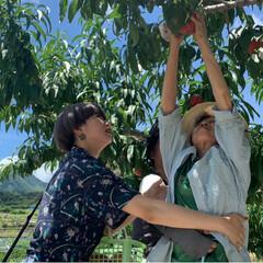 桃狩り 母を連れて桃狩りに行ってきました。 娘2…(6枚目)