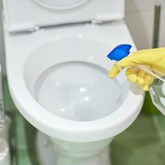 家事/掃除/トイレ掃除/トイレ/生活の知恵/簡単お掃除/... 「トイレをキレイにしておきたいけど、洗剤…