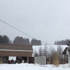 蕎麦/軽井沢/スキー/嬬恋/ごはん/グルメ 昨日はパルコール嬬恋にスキーしに行ってき…