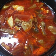 ご飯/免疫力アップ/カルビスープ/暮らし 体内から免疫力アップにと2日煮込みニンニ…(1枚目)