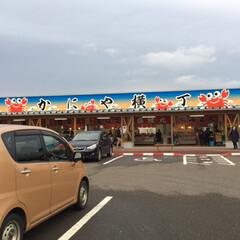 日本海/カニ/道の駅/新潟県/おうちごはん/グルメ 昨日は道の駅マリンドーム能生に行ってきま…