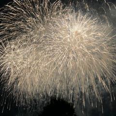 花火大会 群馬県の花火大会🎆 今年は 中々花火が見…