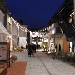 みなとみらい/MARINE & WALK YOK.../ショッピング/横浜 16年3月4日オープンした、 MARIN…