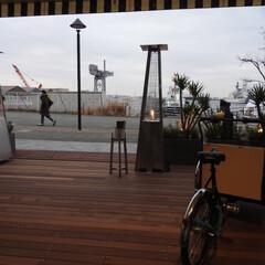 みなとみらい/横浜 16年3月4日にオープンした、 MARI…