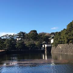冬/おでかけ/風景 近くに来たので、皇居の周りを散歩しました…(2枚目)