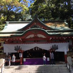 パワースポット/神社 熱海の人気スポット、来宮神社へ⛩ 樹齢2…(2枚目)