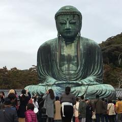 神社/寺/観光/鎌倉/旅 久しぶりに鎌倉をブラブラしてみました。長…(3枚目)
