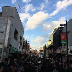 神社/寺/観光/鎌倉/旅 久しぶりに鎌倉をブラブラしてみました。長…(4枚目)