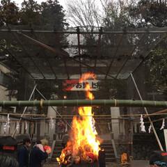 東京/冬/おでかけ/風景 東京 青梅にある赤塚不二夫記念館🚃 年末…(4枚目)