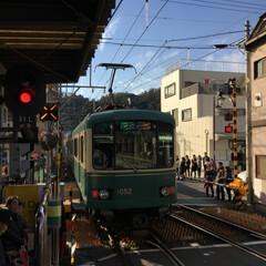 神社/寺/観光/鎌倉/旅 久しぶりに鎌倉をブラブラしてみました。長…